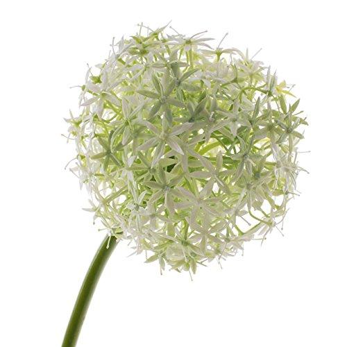 artplants Künstliches Allium Samara, Creme, 75 cm, Ø 12 cm – Kunstblume/Blumenlauch