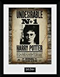 HARRY POTTER Cadre - HP - Undesirable No 1 - GB Eye