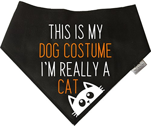 Spoilt Rotten Pets Hundekostüm This is My Dog, mit englischer Aufschrift I'm Really A Cat, Halloween-Kostüm