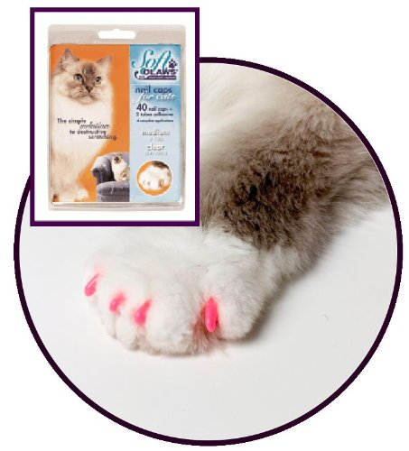 SOFT CLAWS Kit de Protège-Griffes pour Chats Adultes, Medium, Rose