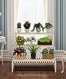 ZENGAI Ferro Fiore Rack Multi - Strato mensole pensili Retro pianta carrello Vasi di fiori Scala mobili in massello di fiori Rack] ( Colore : A1 , dimensioni : 80*70cm )