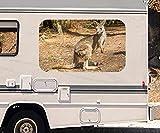3D Autoaufkleber Känguru Australien Tier Wald Wohnmobil Auto KFZ Fenster Motorhaube Sticker Aufkleber 21A644, Größe 3D sticker:ca. 45cmx27cm