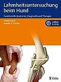 Lahmheitsuntersuchung beim Hund: Funktionelle Anatomie, Diagnostik und Therapie - Daniel Koch