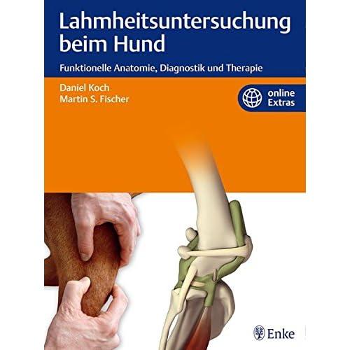 PDF] Lahmheitsuntersuchung beim Hund: Funktionelle Anatomie ...