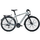 Univega Damen Geo 6.0 Fahrrad, chromosilver matt, 45