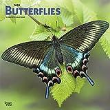 Butterflies 2020 Square Wall Calendar