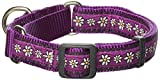Red Dingo Martingale Daisy Kette 20 mm Choke Halsband, mittel/groß, violett