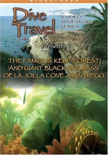 Preisvergleich Produktbild Dive Travel The Famous Kelp Forest and Giant Sea Bass La Jolla,  San Diego,  CA