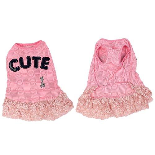 DealMux Sommer-rosa Streifen-Buchstabe-Muster-Spitze-Rand-Schoßhund-Kleid-Rock-XL (Spitze Buchstaben)