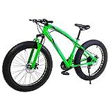 Riscko Vélo Tout Terrain, VTT BEP-011, Fat-Bike 21 Vitesses Shimano 26'' rouses
