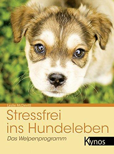 Stressfrei ins Hundeleben: Das Welpenprogramm