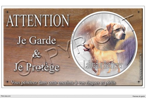 panneau-chien-ou-plaque-labrador-retriever-sable-30-cm