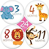 "Kiddosart 24 Pack Of 4"" Premium Baby Monthly Stickers 1 Happy Animal Sticker Per Month Of Your Baby'S Milestone Onesie Stickers"
