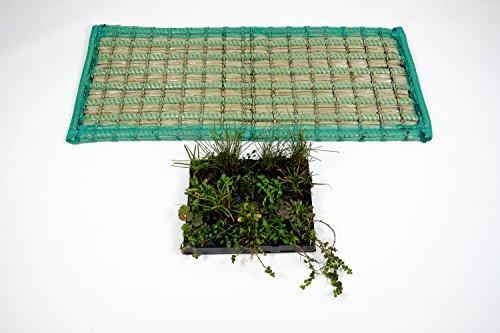Schwimmende Pflanzeninsel Schwimminsel Filter Koi Teich rechteckig 125 x 55 cm