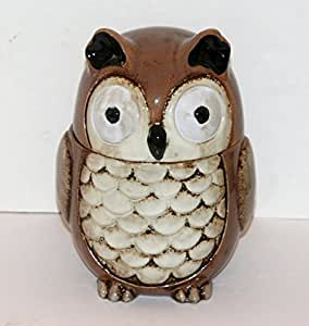 Novelty Owl Biscuit Barrel Ceramic Storage Jar New Boxed