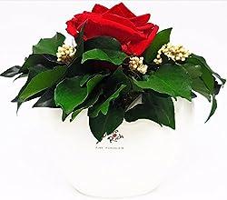 Rosen-te-amo Rosenstrauß In Der Vase Muttertags Geschenk (Echte Rosen) Aus Konservierte Rote Rose – 1 Infinity Blume Partner Liebesgeschenk