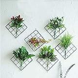 JHion INS Wandgitter aus Metall DIY Eisen Gitter für Pflanzen u Fotos Multifunktions Wandhalterung A-6838