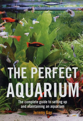 How Long to Wait before Putting Tropical Fish In a New Tank, Aquarium Fish Tanks UK