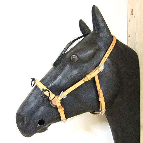 PS Pferdeartikel Französischer Kappzaum Cavecon/Cavesson mit D-Ringen SOFT - Gr. FULL Farbe Natur mit silbernem Beschlag