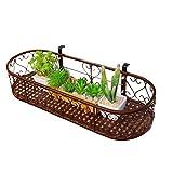 AIDELAI Blumenständer- Europäischen Stil Eisen Balkon Geländer Hängen Blumentöpfe Indoor Wohnzimmer Freies Lochblech Wandregal (Farbe : Brown, größe : 80 * 25cm)