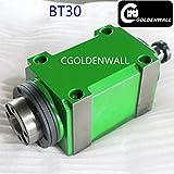 CGOLDENWALL BT30 Hochgeschwindigkeits-Kegelbohrfutter, 1500 W, 1,5 kW, 2 PS Power Head Power Unit CNC-Schneid-/Bohr-/Fräsmaschine, Drehwerkzeug, Spindel 6000~8000 U/min für Bohranwendung