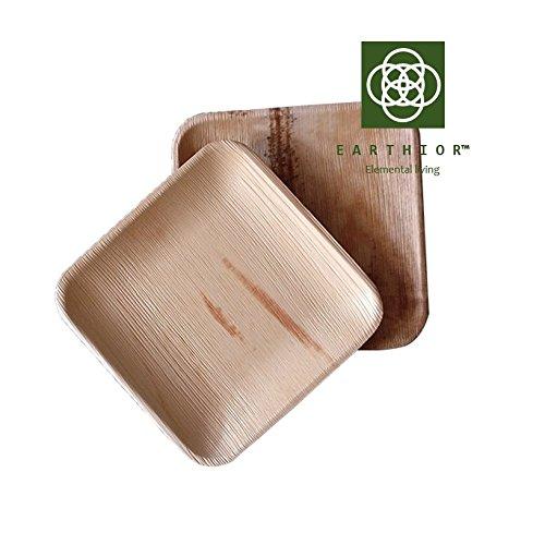Set von 10 quadratischen 20,3 cm Eco Einweg Vorspeisenplatten, wiederverwendbare, biologisch abbaubare, kompostierbare Premium Partyteller