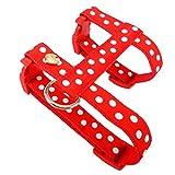 Queenly 4260466960669 Hundegeschirr Punkte, XS, rot