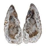 Achat Geode PAAR aufgeschnitten, poliert A* Qualität Größe *M* ca. 40 - 50 mm