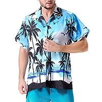Clothin Men's Hawaiian Shorts Sleeve Shirts(Blue2 M)