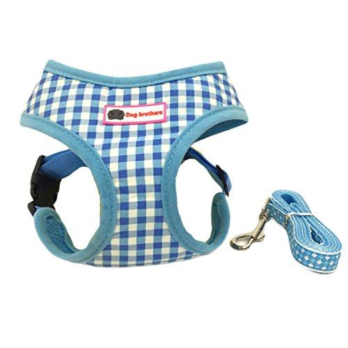 BSJY Atmungsaktives Katze Geschirr und Leinen Set Soft Mesh Hundegeschirr Verstellbar Easy Walk Hundegeschirr für Kleine und Mittelgroße Hunde und Katzen