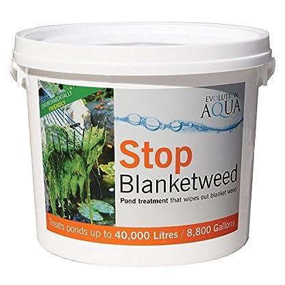 Stop Blanketweed 1kg 1