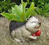 Wonderland Garden Decor Laughing Hedgehog Flower Pot Holding - Best Reviews Guide