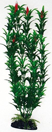 wave-egeria-plante-avec-fleur-classique-pour-aquariophilie-bicolore-taille-m