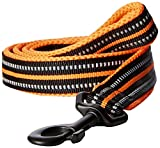 #10: PetsUp Stylish Dog Leash for Small Medium Large Dogs (2cm wide 200cm long, Reflective Leash- Orange)