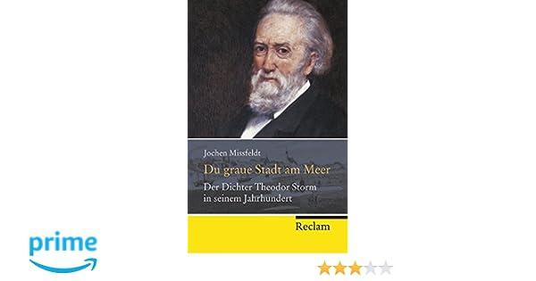 du graue stadt am meer der dichter theodor storm in seinem jahrhundert biographie reclam taschenbuch amazonde - Theodor Storm Lebenslauf