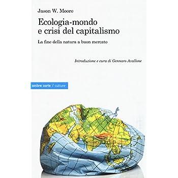 Ecologia-Mondo E Crisi Del Capitalismo. La Fine Della Natura A Buon Mercato