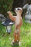 XL Erdmännchen Eddy mit Solarlaterne Figur Gartenfigur 40 cm