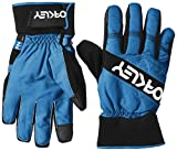 FACTORY WINTER GLOVE 2, size:L;producer_color:6CS-California Blue
