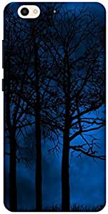 The Racoon Grip forest hard plastic printed back case / cover for Gionee S6