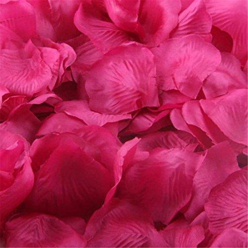 Rosenblüte Silk künstliche Blumen Blätter Rosen Blumenblatt Hochzeitsfest Dekorationen Valentinstag romatische Überraschung Rosenblätter (Hot Pink) (Bulk-rosenblätter)