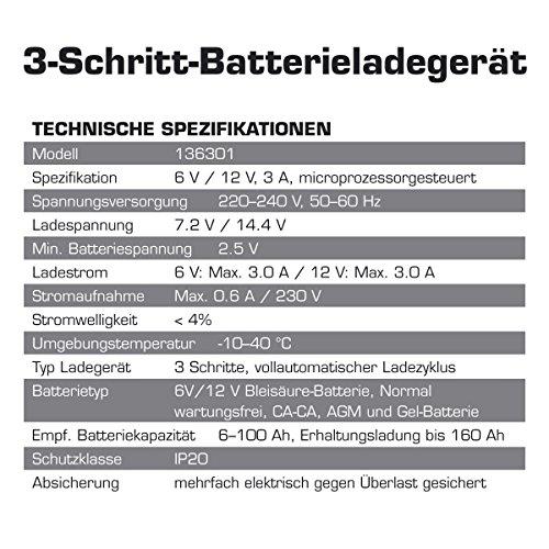 test dino kraftpaket 6v 12v 3a batterieladeger t. Black Bedroom Furniture Sets. Home Design Ideas