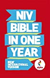 NIV Alpha Bible In One Year (New International...