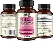 مستخلص فورسكولين لفقدان الوزن. حبوب Forskolin Diet Pills & Belly Buster مكملات مثبطات الشهية الممتازة، معز