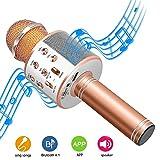 DAMIGRAM Bluetooth Karaoke Mikrofon, Drahtlose Handmikrofon Mikrofon mit Lautsprecher 4 in 1 Kabellos Mikrofon für Musik spielen KTV,Party, Android/IOS Smartphone