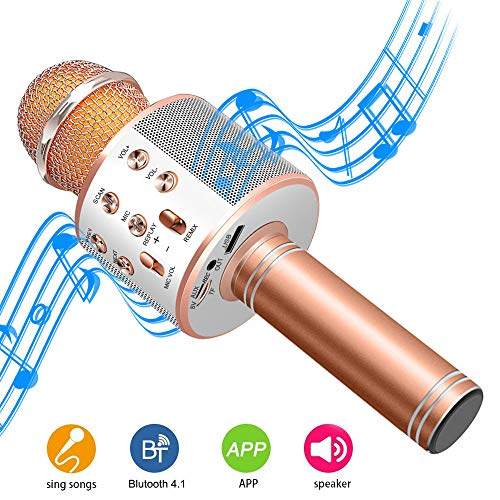 DAMIGRAM Microfono Wireless Karaoke Bluetooth Microfono con Altoparlante, 4.1 Handless Portatile KTV Karaoke Player per Cantare, Funzione Eco, Compatibile con Android/iOS, PC o smartphone