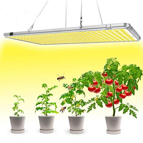 Bozily Lampe Plante LED, Lampe de Croissance Horticole, Auto On/Off avec 12/15/18/24H Minuterie, 300W, 338 LEDs, Sunlike Full Spectrum, pour Semis, Croissance, Floraison et Fructification