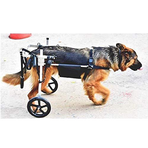 AGYE Silla De Ruedas para Perros - Silla De Ruedas para Patas Traseras - para La Rehabilitación De Las Patas Traseras De La Silla De Ruedas para Perros/Perros para Discapacitados 2 Ruedas,XXL
