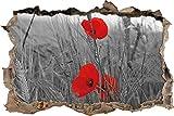 Pixxprint 3D_WD_5157_92x62 Einzelne Mohnblumen im Getreidefeld Wanddurchbruch 3D Wandtattoo, Vinyl, Schwarz/weiß, 92 x 62 x 0,02 cm