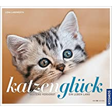 Katzenglück: Bestens versorgt ein Leben lang