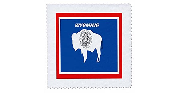 10 by 10-Inch 3dRose qs/_45076/_1 State Flag of Wyoming-Quilt Square